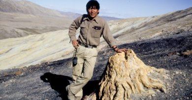 Dr. Tatsuo Sweda, de l'université de Nagoya au Japon devant un tronc fossilisé près du Fjord Strathcona sur l'île d'Ellesmere au Nunavut en 1990. (Courtoisie Dr. Jim Basinger)