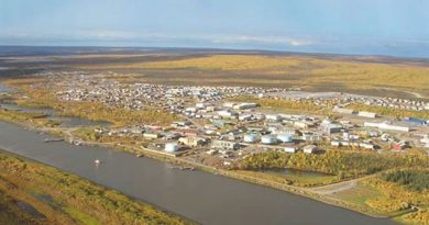 The high Arctic town of Inuvik in summer, rich in insects, birds, fish, wildlife; definitely not perpetual ice and snow, and no penguins ever. (CBC)