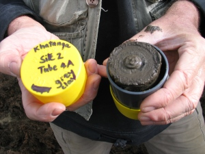 This is one of more than 200 permafrost cores containing DNA from Ice Age plants that was analyzed in the study. Cores from Alaska and Yukon were collected by Canadian scientists Grant Zazula and Duane Froese. (Ross MacPhee)