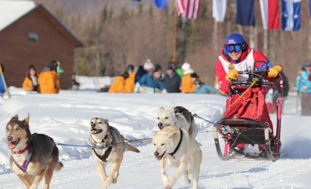 13-year-old Ethel Ford of Rankin Inlet, a community in Canada's eastern Arctic territory of Nunavut, races in the individual 7.5 km dog mushing race. She finished just three minutes behind the gold medallist from Alaska. 'I did alright,' she told the CBC's Alyssa Mosher, but Ford says she wishes she'd stopped for people passing her, so they could help pack down the trail and lead her faster to the finish line. (Michel Rheault / CBC.ca)