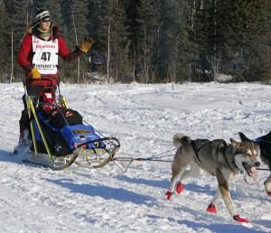 Joar Leifseth Ulsom at the 2014 Iditarod restart in Willow. (Josh Edge, APRN – Anchorage)