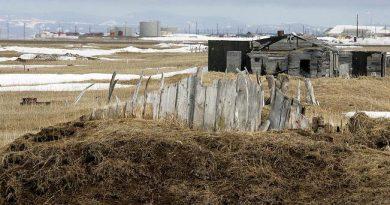 Point Hope, Alaska in background. (Al Grillo / AP)