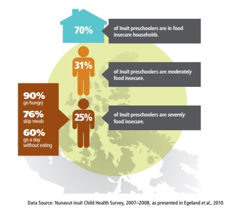 The Nunavut Inuit Child Health Survey, 2007-2009, found that 70 per cent of Inuit preschoolers don't know when they'll get their next meal. (Aboriginal Food Security in Northern Canada: An Assessment of the State of Knowledge / CBC.ca)
