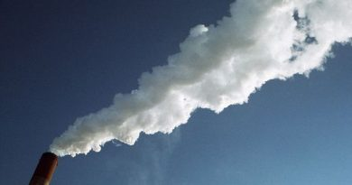 Greenhouse gas emissions in Finland fell by 5.9 million tons carbon dioxiide between 2011 and 2012. (Mikko Nurmi / YLE)