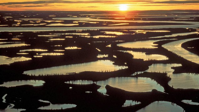The Mackenzie delta, vastly important in the earth'ls climate. Photo Credit: M. Milne/Northwest Territories Government/The Canadian Press)