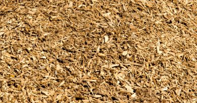 The bulk of the biomass at the Turku plant will be wood chips gathered within a 150-kilometre radius. (iStock)