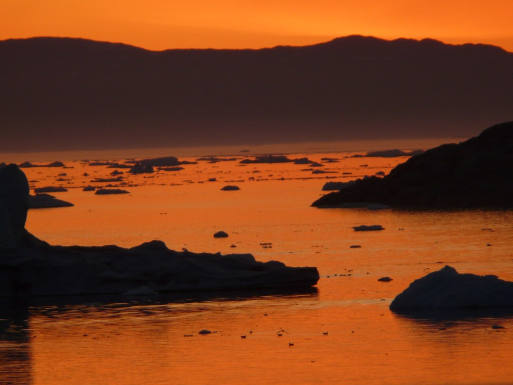 Ice in shadow on an Arctic summer night (I.Quaile)