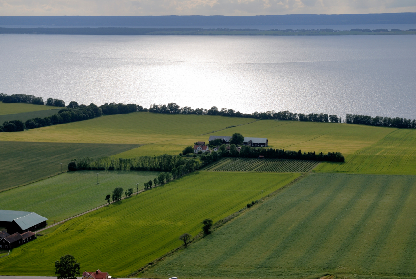 A farm on the edge of Vättern Lake in Sweden. (iStock)