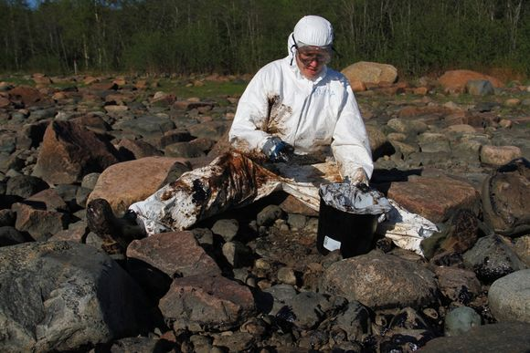 A volunteer from the environmental NGO WWF helps with the arduous cleanup operation. (Joonas Fritze / WWF )