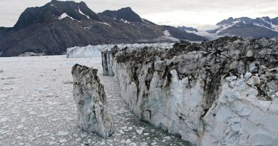 Standing 100 feet above the bay, a tower of ice in the process of becoming an iceberg separates from Columbia Glacier