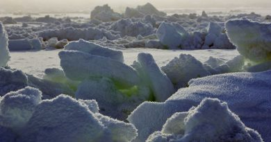 Sea ice on the Chukchi Sea near Barrow, Alaska. This image was taken during the OASIS (Ocean - Atmosphere - Sea Ice - Snowpack) field project. Part of International Polar Year, OASIS tackled a number of standing questions in polar chemistry, with the emphasis on the life cycle of pollutants that drift into the Arctic. Photo courtesy: University Corporation for Atmospheric Research