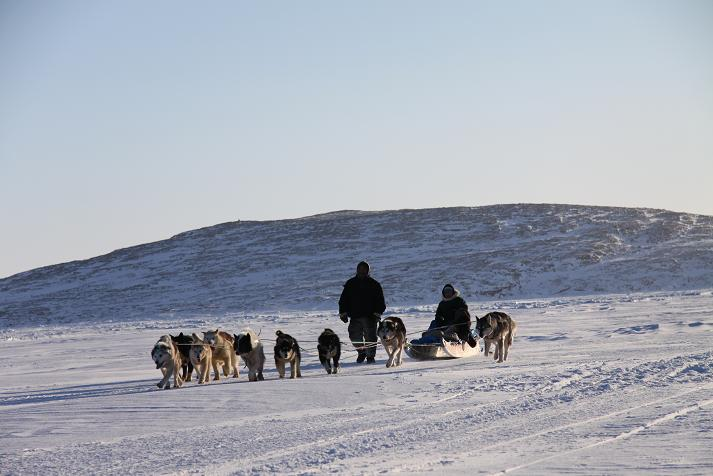 A dog team pulls a sled on the ice near Clyde River, Nunavut. Photo: Levon Sevunts/Radio Canada International