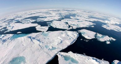 Sea ice data was discussed at the Arctic Circle meeting in Iceland this weekend.(Jonathan Hayward/Canadian Press)