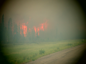 Fire burns near Highway 3 between Fort Providence and Edzo. (GNWT)