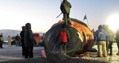 North Slope residents prepare to subsistence harvest a bowhead whale. Tony Hopfinger photo