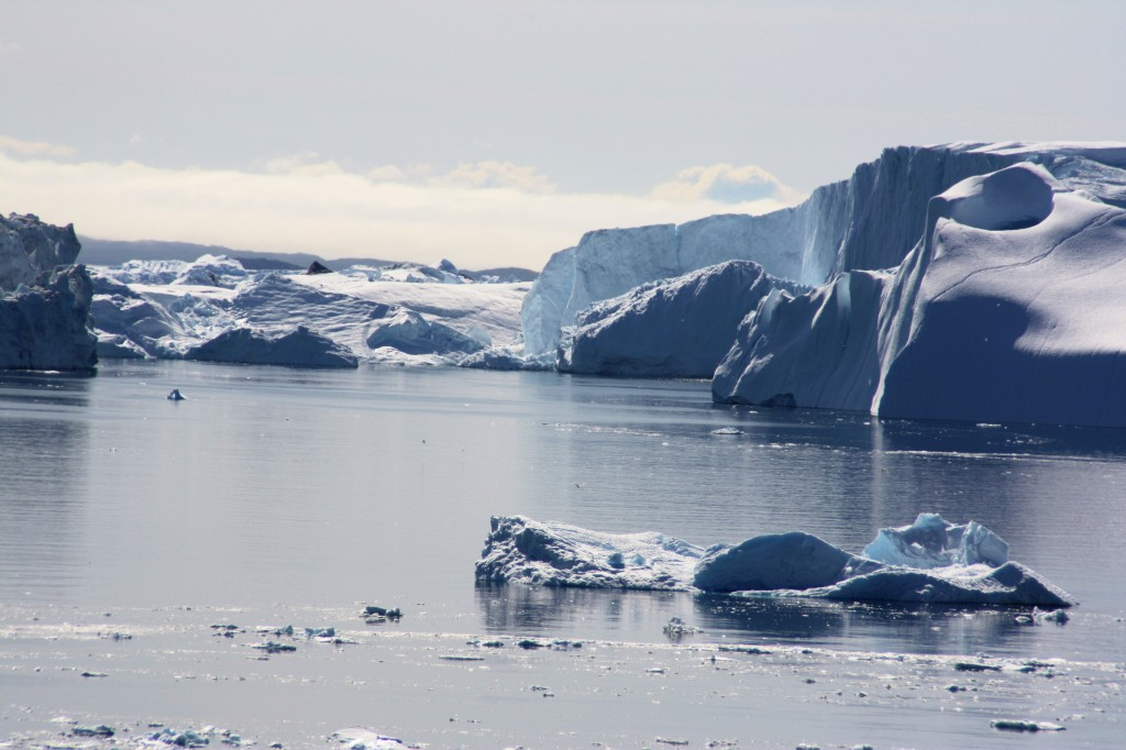The Sermeq Kujualleq glacier discharges icebergs into the sea (I. Quaile, Ilulissat 2009)