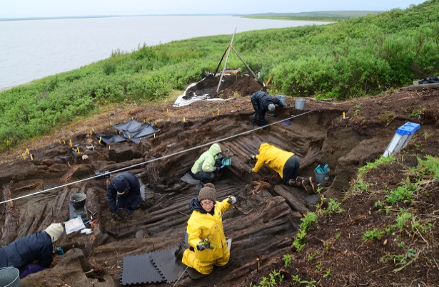 Letitia Pokiak measures the location of an artifact found while excavating the large cruciform house. Letitia is kneeling on the rear bench of the house, with the main floor and two side benches located behind her. The entrance tunnel, extending downhill toward the Mackenzie River, is in the background and is covered with plastic sheeting so the wood will not dry out. (Courtesy Max Friesen)