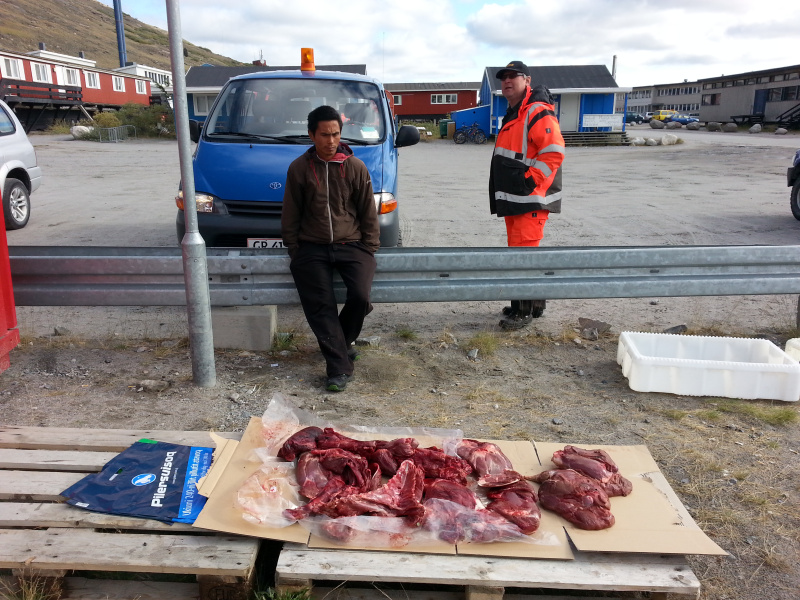 Caribou meat for sale outside Pilersuisoq. (Mia Bennett/August 2014)