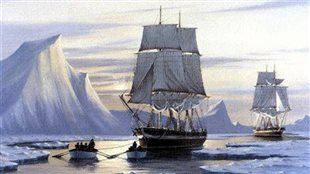 Erebus and Terror being towed carefully through ice. The mystery of the lost ships is solved to some degree with the finding on September 7 of one of the ships. It remains to be determined which of the two ships they have found. (J. Franklin Wright)