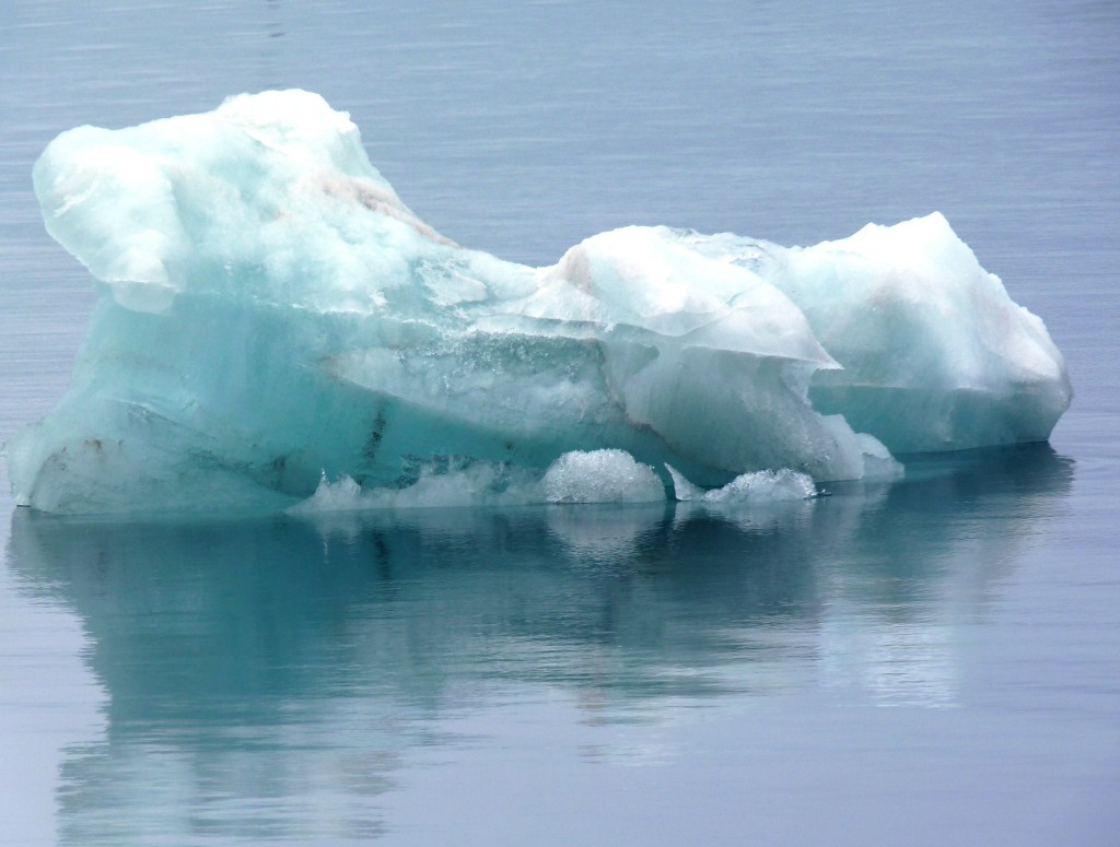 Arctic ice on the endangered list. (I.Quaile)