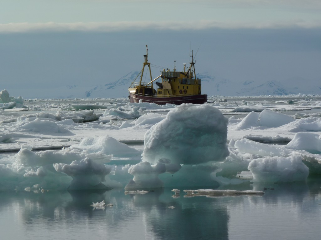 Shipping in icy waters is becoming more common (I. Quaile)