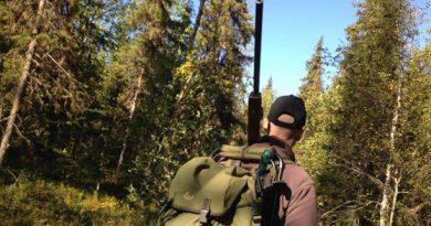 A hunter in the Swedish woods. ( Ida Brännström / Sveriges Radio)