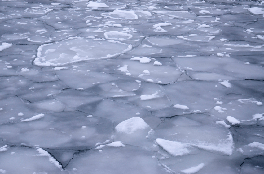 Arctic sea ice. (iStock)