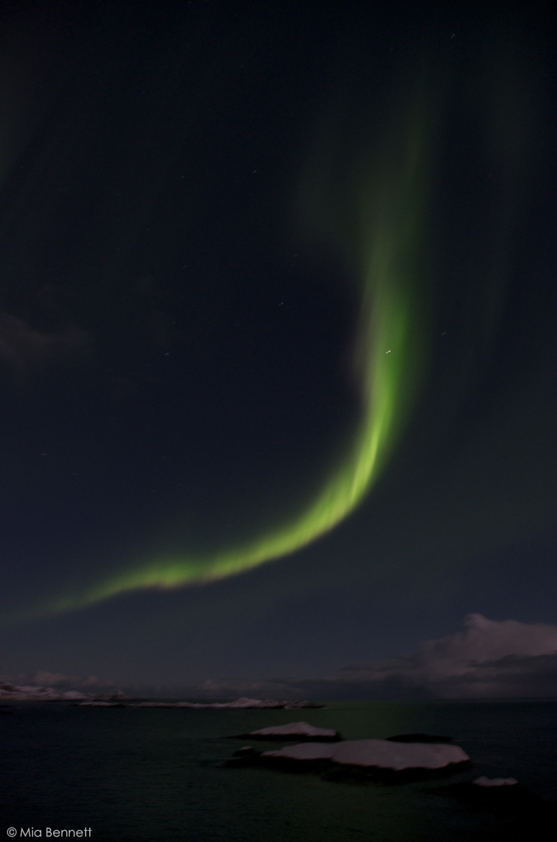 The aurora as viewed on a dark night from Å, Lofoten, Norway. (Mia Bennett/ January 2013)