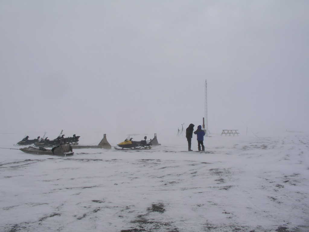 Ice Blogger's trip to  Point Barrow in 2008. (Irene Quaile)