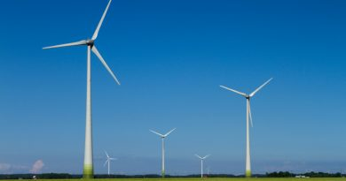 Power prices and the subsidies for renewable power producers are currently at a record low in Sweden.(iStock)