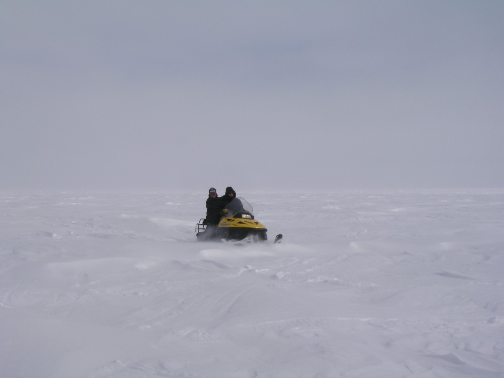 Ice free Arctic Barrow by 2020? (Irene Quaile)