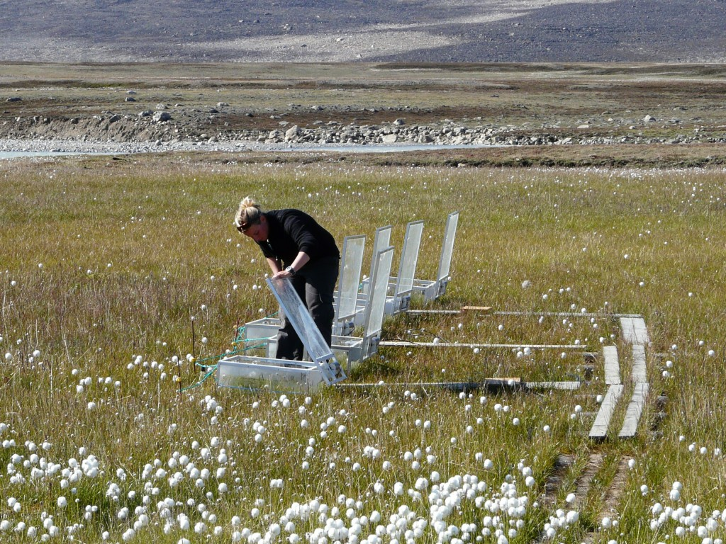 Scientists at measuring stations like the one I viisted at Zackenberg, Greenland, measure the amount of greenhouse gases emitted by melting permafrost. (Irene Quaile)