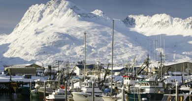 Fishing boats are moored in icy water at the small boat harbor on April 1, 2004 in Valdez, Alaska. (David McNew/Getty Images)