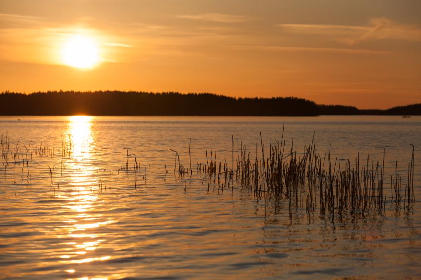 Lake Saimaa, home to the Saimaa ringed seal. (iStock)