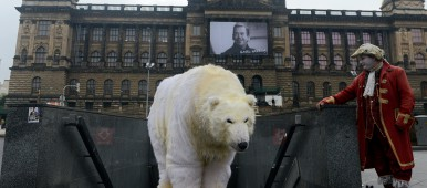 Greenpeace activist dressed like a polar bear in Prague, Czech Republic on October 13, 2014. (Michal Cizek/AFP/Getty Images)