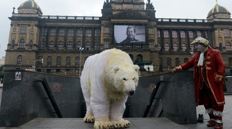 Greenpeace activist dressed like a polar bear in Prague, Czech Republic on October 13, 2014. (Michal Cizek/AFP/Getty Images)
