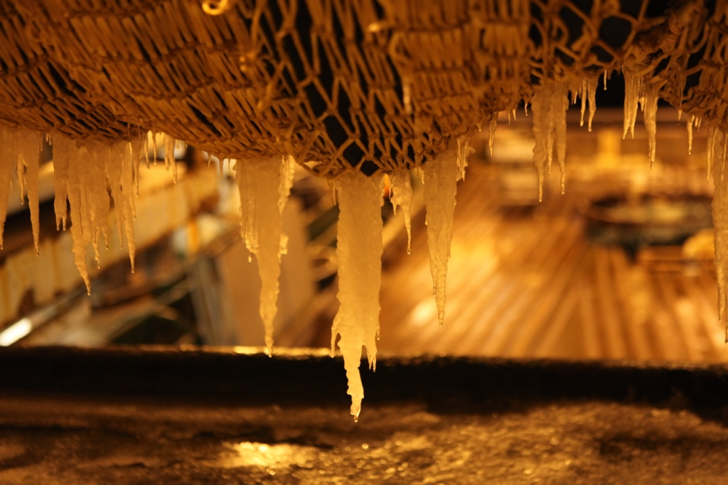 Icicles on the HH's nets. (Irene Quaile)