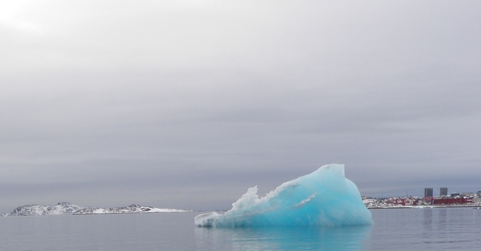 An iceberg chunk floating near Nuuk, Greenland. (Eilís   Quinn/Eye on the Arctic)
