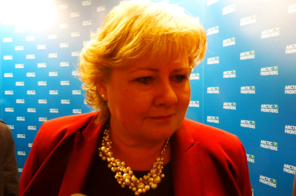 Norwegian PM Solberg wants to combine climate protection with Arctic gas. (Irene Quaile)
