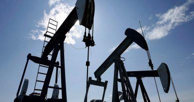 Pumpjacks at work pumping crude oil near Halkirk, Alta., June 20, 2007. (Larry MacDougal/The Canadian Press)