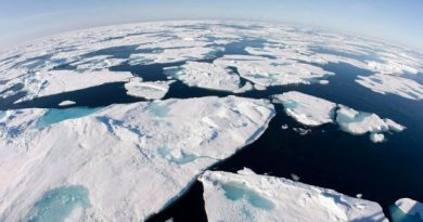 Canada and five other countries are using maps of the seabed to stake their claim to Arctic territory. (The Canadian Press)