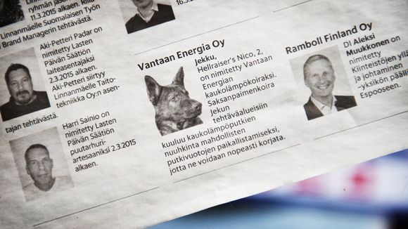 Vantaan Energia took out this ad to publicise its appointment of Jekku, the leak-sniffing dog. (Yle)