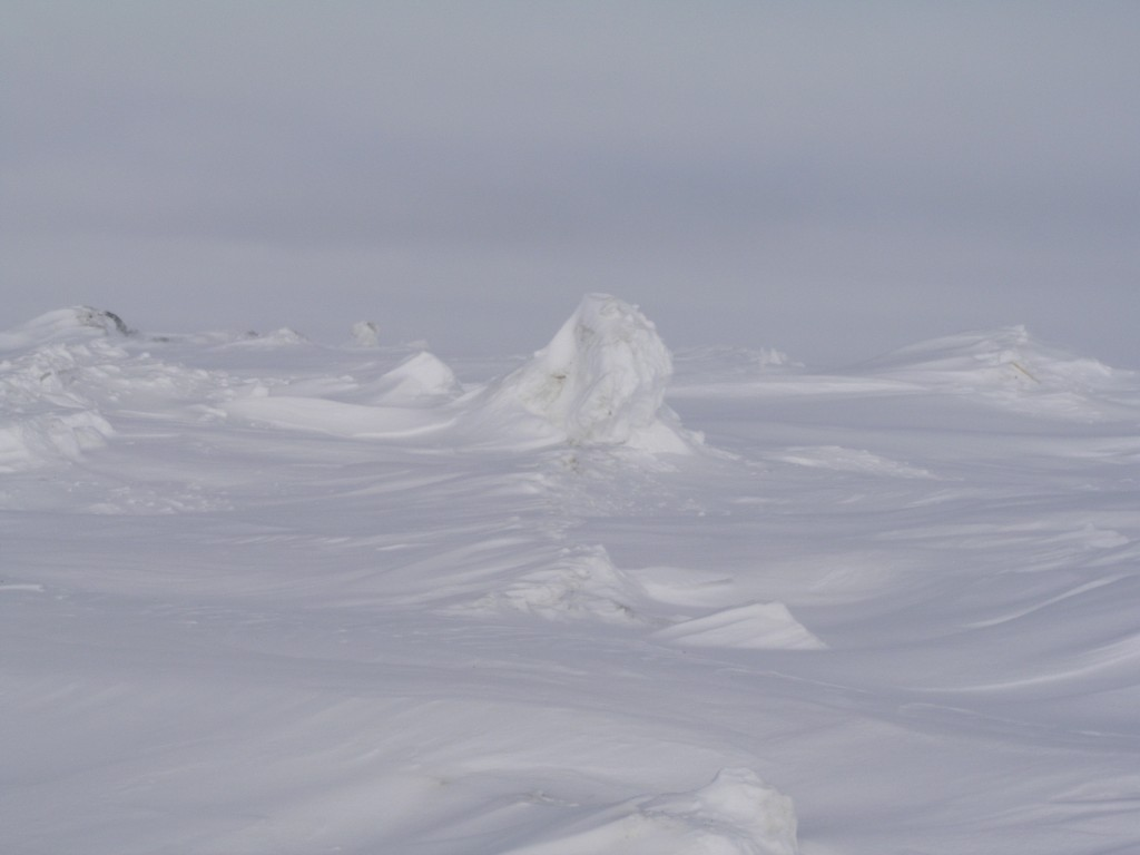 Beautiful when frozen: Chukchi Sea, Barrow, Alaska. (Irene Quaile)