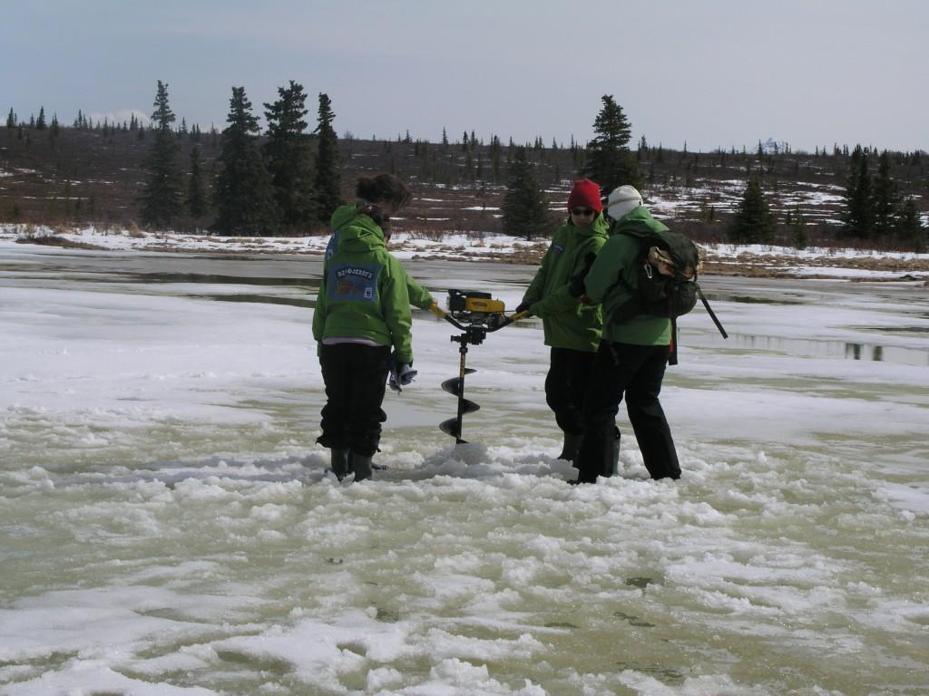 Cornelissen's team drills to measure methane emissions from melting permafrost. Denali, 2008) (Irene Quaile/ Deutsche Welle)