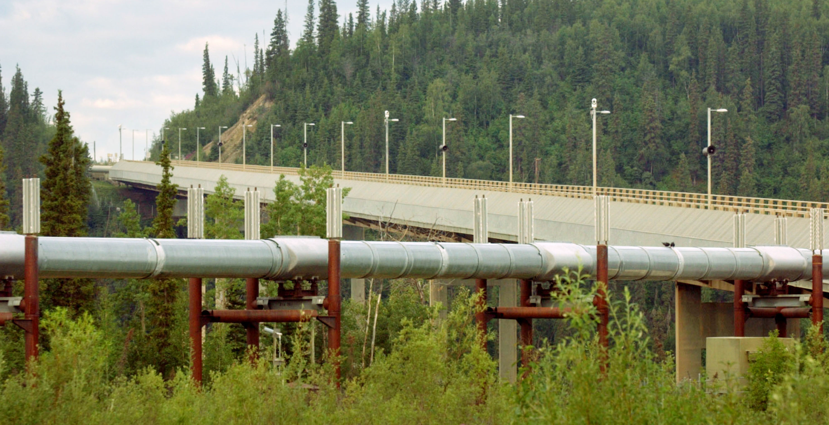 The Trans-Alaska Pipeline  near the Dalton Highway.(Barry Williams/Getty Images)