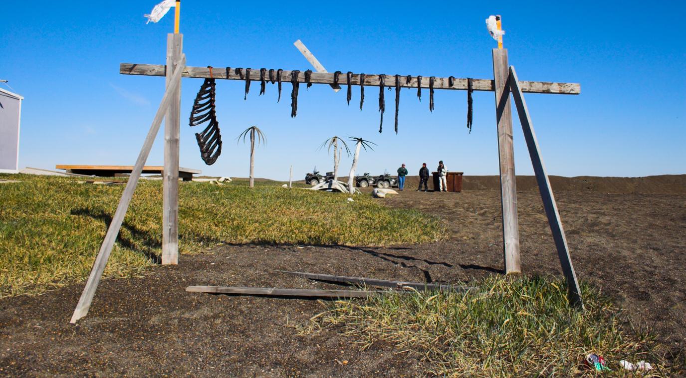 Scene from Inupiaq region of Alaska. (iStock)