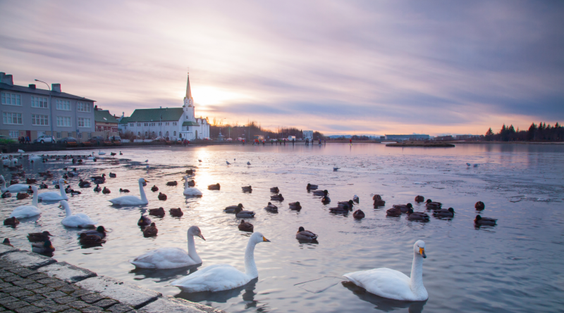 A view of Reykjavik, Iceland's capital city. (iStock)