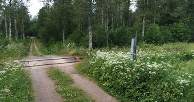 Are faulty computer systems to blame for the under reporting of train collisions with wildlife? (Henrik Svensson/Sveriges Radio)