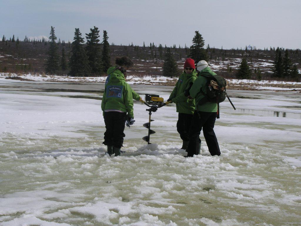 Greenhouse gases are captured under Arctic permafrost. (I. Quaile)