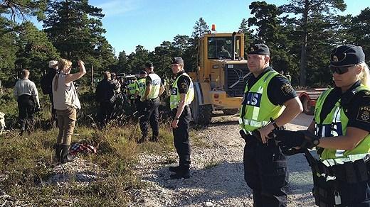 Ojnare forest protest in Gotland. (Cristina Jardim Ribeiro/Radio Sweden Gotland)